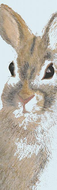 art rendering of bunny