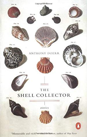 Book cover with photos of sea shells.